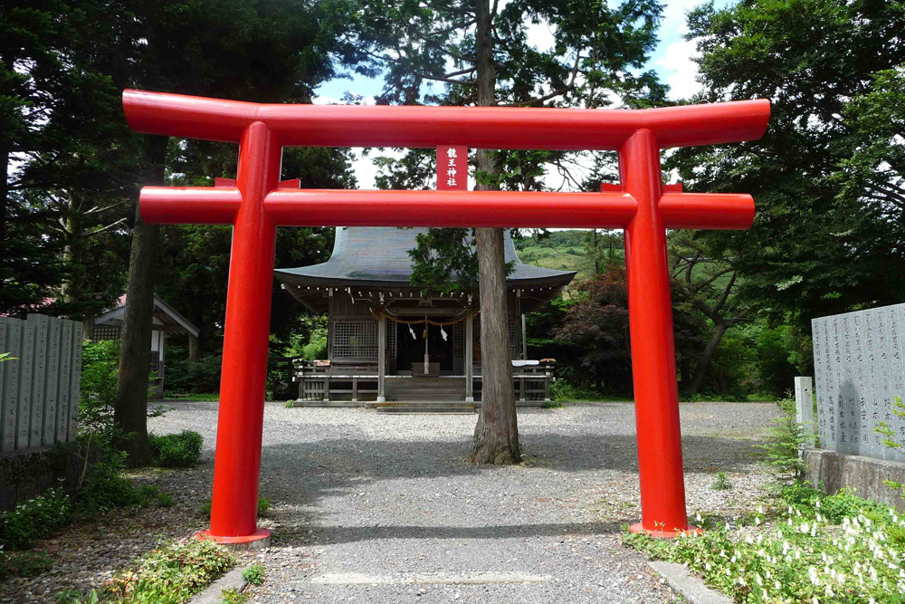 小松ヶ池の隣にある龍王神社