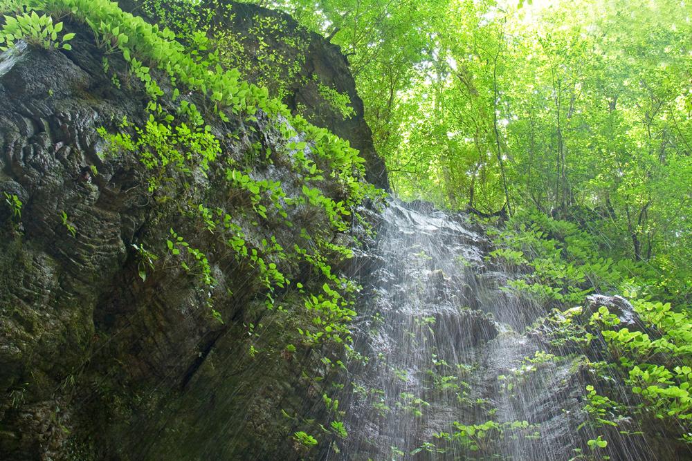 切り立った岩壁に水がしたたる仲の滝