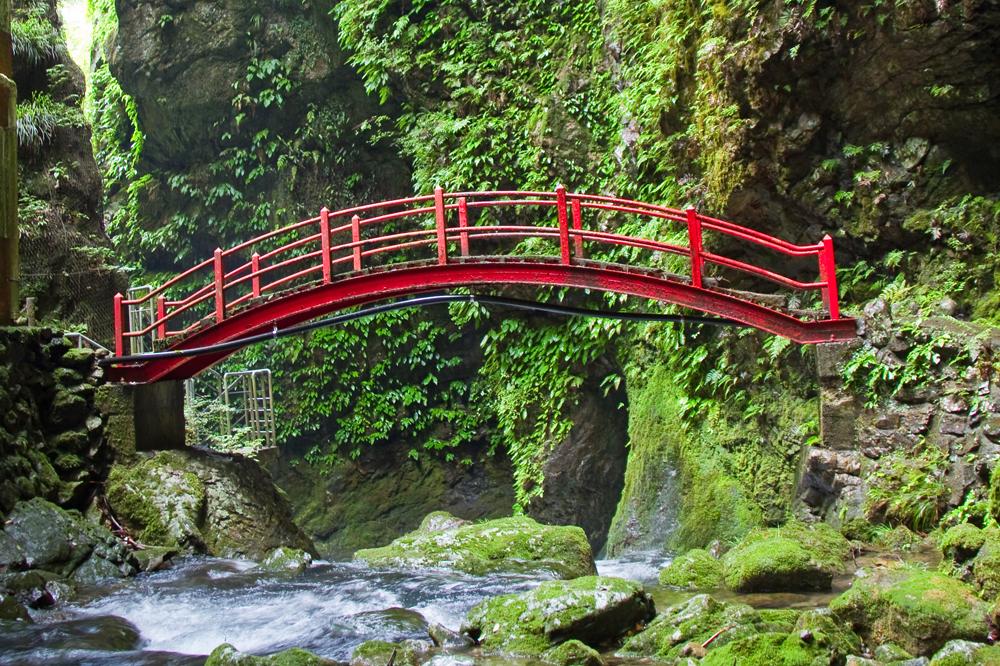 赤い橋がかかる遊歩道