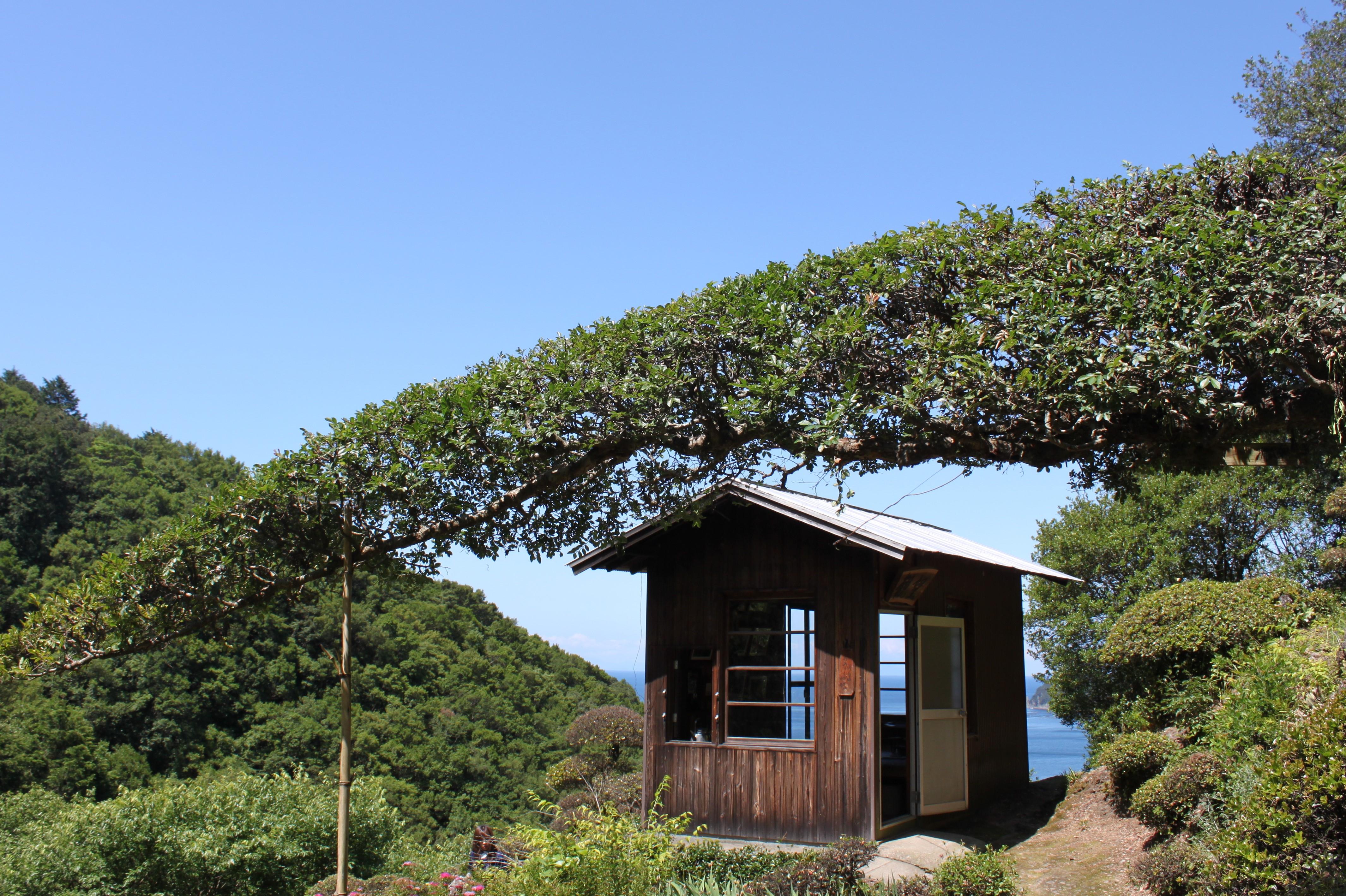 休憩できる小屋があります