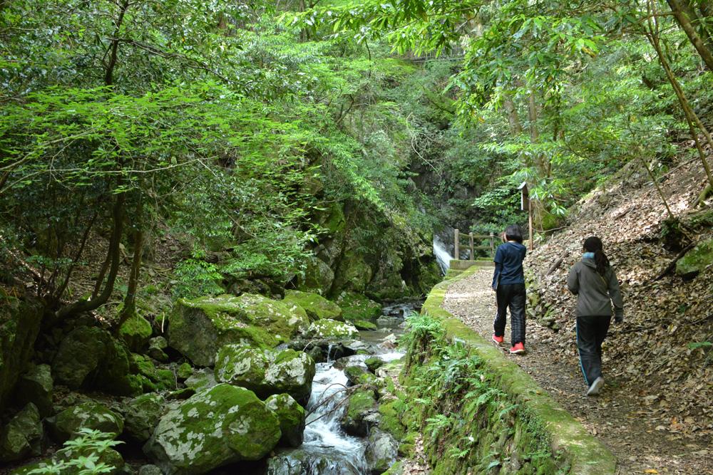 三滝渓谷の歩道