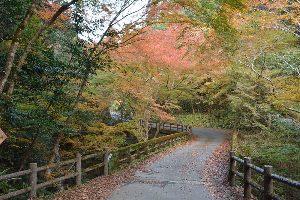 三滝渓谷の紅葉