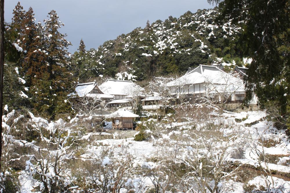 冬の龍澤寺