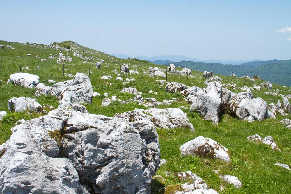 石灰岩の台地